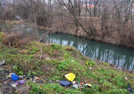 Maluri... nespălate: Malurile Crişului Repede în Oradea sunt ticsite de gunoaie (FOTO)