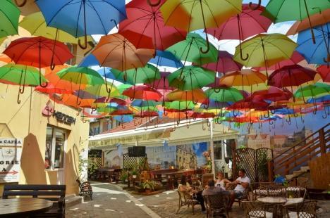 Orădenii, invitaţi pe cea mai colorată terasă (FOTO)