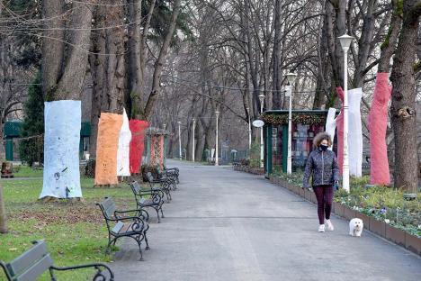 Jos pălăria! Orădenii, invitați să-și scrie gândurile pentru noul an pe copacii din Parcul Libertății (FOTO)
