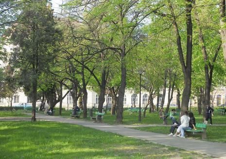 Viitorul este verde! Ce prevede noua strategie verde pe următorii 10 ani în Oradea