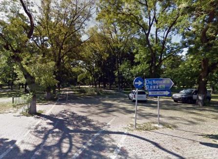 """Se caută administratori """"verzi"""" pentru trei parcuri din Oradea"""