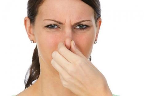Legea mirosurilor, în vigoare