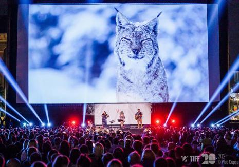 Cinema Oradea: La finalul săptămânii, cinefilii sunt aşteptaţi la TIFF, cu proiecții în aer liber pentru toate vârstele și invitați speciali (VIDEO)