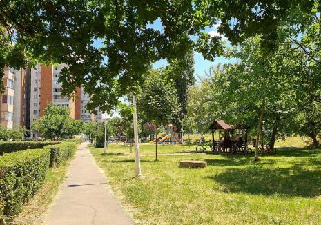 """Responsabili de """"verde"""": Oradea are un nou regulament pentru îngrijirea spaţiilor verzi. Care sunt obligațiile pentru orădeni?"""