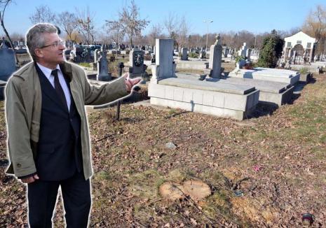 Gropar de verde: ADP Oradea taie copacii din cimitir ignorând legea şi interdicţia dată de Primărie