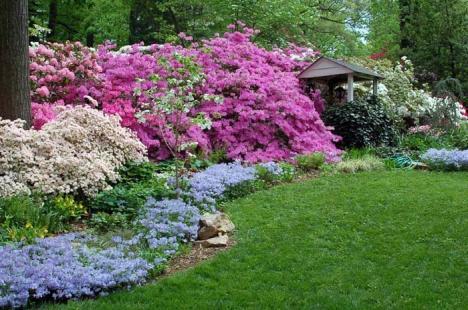 Grădini transformate în paradis