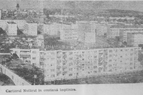 Oradea ieri, Oradea azi: Cum a apărut cartierul Nufărul și cum va arăta după noile modernizări?