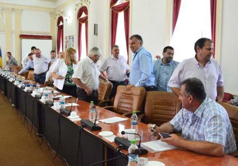 Judecata voturilor: Consiliul Judeţean a dat în judecată PNL Bihor fiindcă nu votează 'pentru'