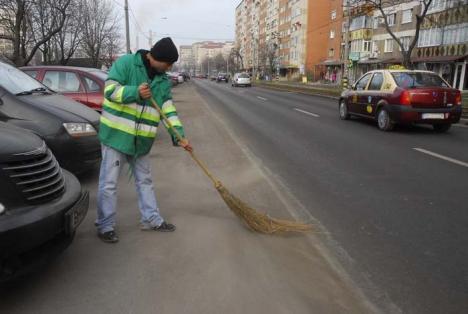 Salubrizarea stradală a Oradiei, la raport