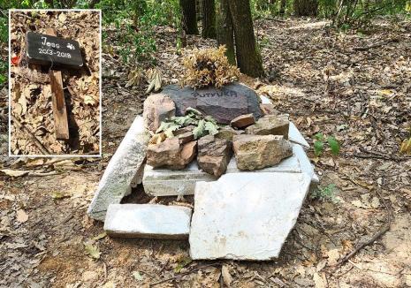 Cimitirul clandestin: Un cimitir pentru câini şi pisici, amenajat pe ascuns într-o pădure de lângă Oradea (FOTO)