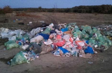 Ne enervează: Gunoaiele fără limită, din capătul cartierului Grigorescu
