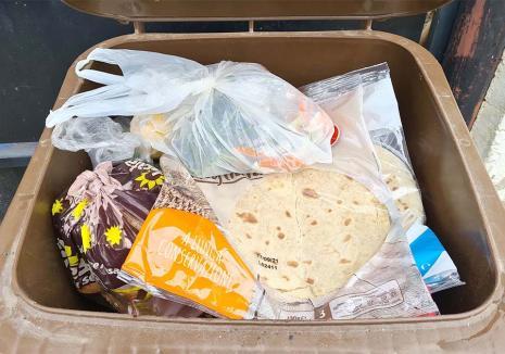 Sortaţi şi reciclaţi! Colectarea separată a deşeurilor, singura soluţie pentru a 'micşora' muntele de gunoaie de la marginea Oradiei