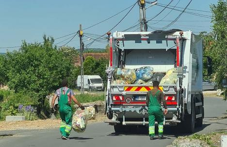 Reciclabilele, în orice sac: Bihorenii pot folosi saci transparenți pentru colectarea selectivă a deșeurilor
