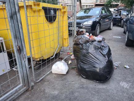 """Gunoaie """"emigrate"""": Ţarcurile din jurul blocurilor din Oradea, invadate de gunoaiele firmelor care nu vor să plătească factura de salubritate"""