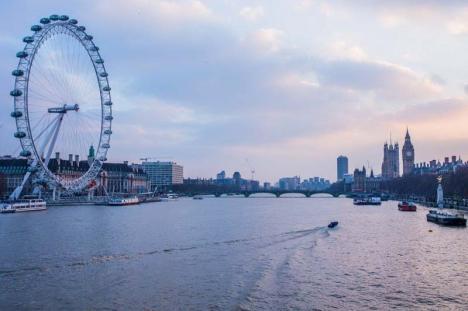 Descoperire surprinzătoare: Peşti hiperactivi din cauza cocainei, în râul londonez Tamisa