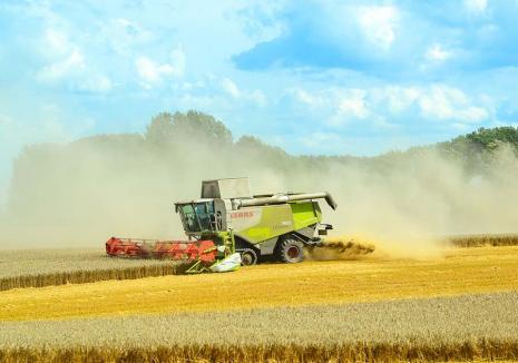 Subvenţii 'dublate': O firmă care a primit subvenţii umflate, dată pe mâna DNA de şeful Direcţiei Agricole Bihor