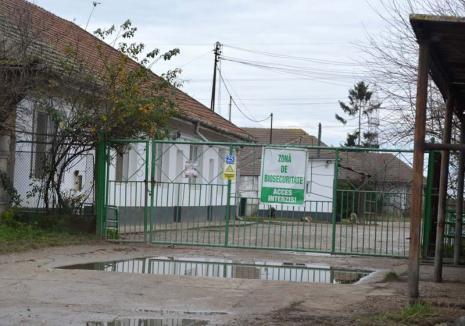 Rigoare anti-putoare: Agenţia de Mediu obligă Nutripork să respecte legislaţia europeană aplicabilă fermelor de porci