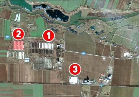 Mega-porcăria: La doi paşi de crescătoria de porci din Ioşia, care împute Oradea, s-a deschis una de trei ori mai mare, la Sântandrei! (FOTO)