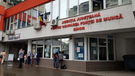 Şomerii pandemiei: Îngenuncheată de criza Covid-19, piaţa muncii din Bihor nu dă semne de relansare