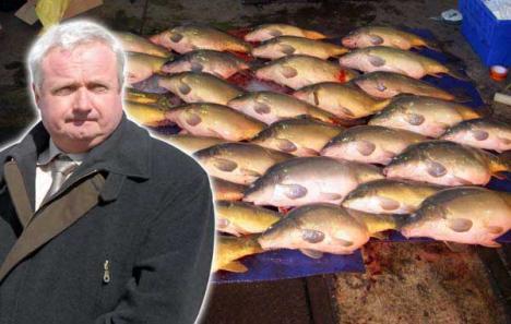 Veterinar în undiţă: Fostul şef al DSV, pozat pe când dijmuia un transport de peşte confiscat