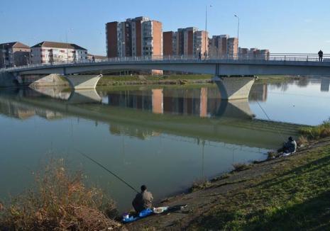 """Războiul undiţelor: Cele două asociaţii care reunesc pescarii sportivi din Bihor sunt în conflict, victime fiind tocmai """"undiţarii"""""""