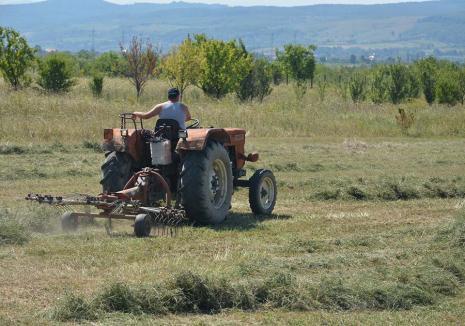 Se întorc chiaburii! Noua lege face tot mai dificilă vânzarea terenurilor agricole, favorizându-i pe marii fermieri