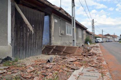 Ciclon de Bihor: Județul nostru a suferit cele mai mari pagube în păduri, în urma furtunii de acum o săptămână (FOTO)