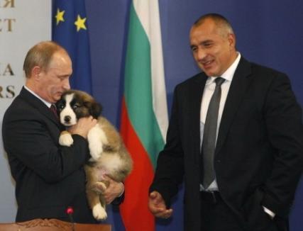 Câinele primit de Putin de la premierul bulgar ar trebui să se cheme... Gazprom