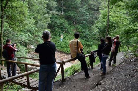 Turişti acasă: Iubitorii călătoriilor în natură pot merge săptămânal în excursii prin judeţ, pentru a vizita Ţara Beiuşului şi Munţii Apuseni