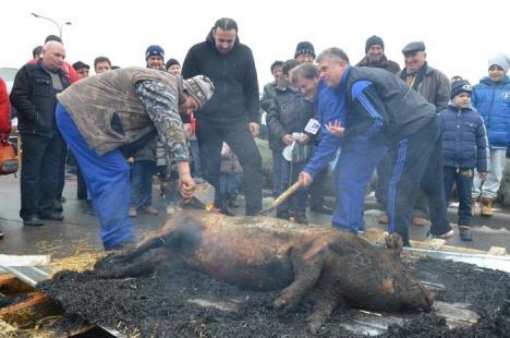 "Mii de bihoreni la ""prânzul porcului"" de la ERA Park (FOTO / VIDEO)"