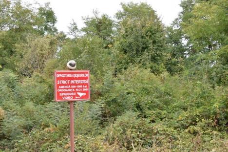 """Spaima gunoaielor: Au fost """"plantate"""" camere pe DN 76, pentru a descuraja aruncarea deșeurilor"""