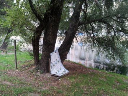Vandalism în formă continuată, pe malul Crişului (FOTO)