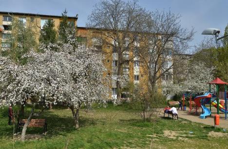 Regulamentul de spaţii verzi, atacat în instanţă de o asociaţie de proprietari din Rogerius