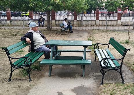 Parcurile Seleuş şi Onisifor Ghibu din Oradea au 90 de bănci noi pentru odihnă
