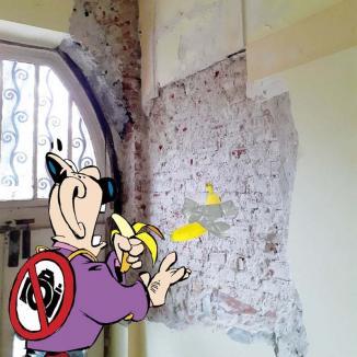 """Ciuciu banana: Celebra banană """"adezivă"""" a ajuns pe zidurile facultăților de Litere și Georgrafie din Oradea"""