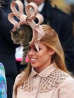Casa Regală britanică, ruşinată pe Facebook din cauza pălăriei prinţesei Beatrice
