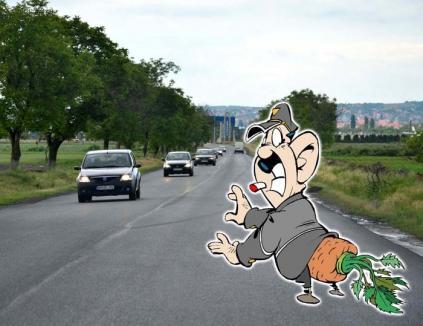 Drum bum! Constructorii de pe DN79 n-au trasat marcajele pe ruta Oradea-Nojorid