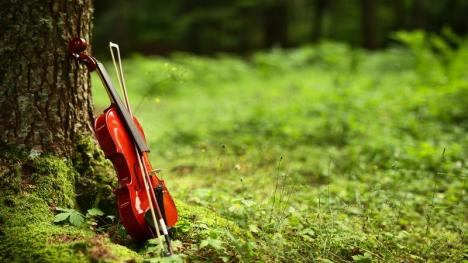 Surpriză pentru melomani: Filarmonica Oradea oferă primul concert în aer liber după starea de urgenţă