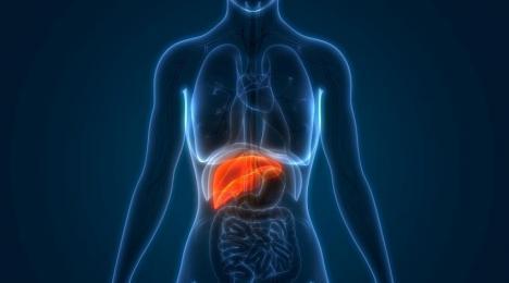 Afecțiunile ficatului: hepatita cronică. Ce trebuie să știi