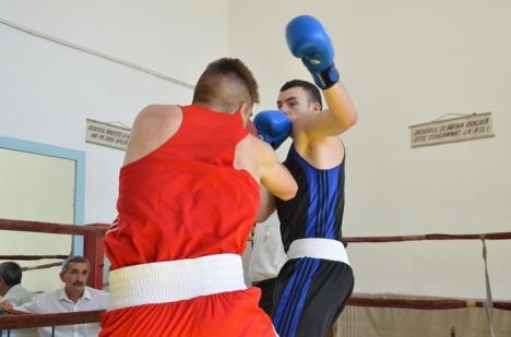 Cupa Bihorul la box: Concurs cu scandal în interiorul clubului organizator şi înfrângere prin KO pentru Rareş Macaru (FOTO)