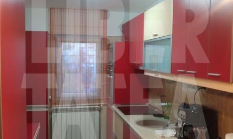 Elena Udrea se laudă cu apartamentul din Roman în care s-a mutat (FOTO)