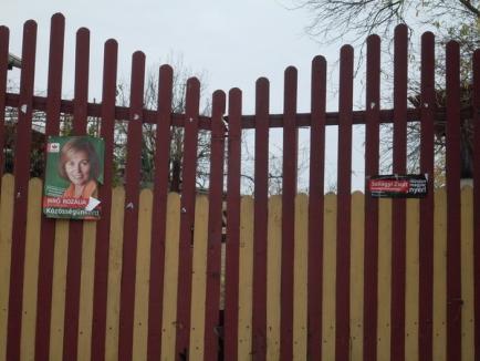 Oamenii lui Tokes acuză 12 primari UDMR de obstrucţionarea campaniei electorale a PPMT