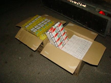 Ţigări de contrabandă în valoare de 20.000 de euro, descoperite în cutii de Cocolino (FOTO)