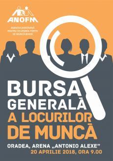 Firmele din Bihor, invitate să participe gratuit la Bursa Generală a Locurilor de Muncă
