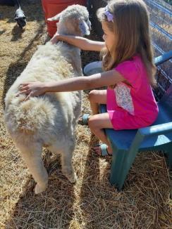 Antonia, salvatoarea: Povestea iubitoarei de câini din Bihor care a descoperit 'groapa morţii' de la Berechiu (FOTO)