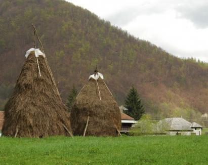Consiliul Judeţean îi îndeamnă pe bihoreni să îşi petreacă weekend-urile în Bihor