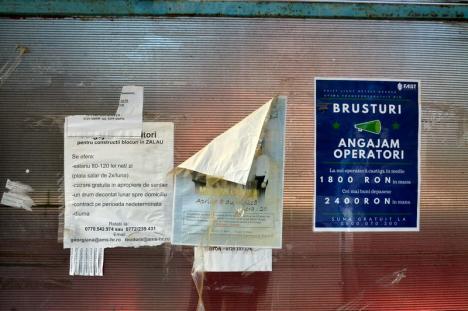 Răsplată pentru lene: În vreme ce firmele caută angajaţi, asistaţii din Brusturi primesc ajutoare sociale chiar şi plecaţi în străinătate (FOTO)