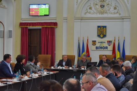 UDMR şi PSD, în minoritate la CJ Bihor: PNL şi ALDE au mutat 8,7 milioane lei de la bugetul Judeţului şi ONG-uri la DGASPC şi Aeroport