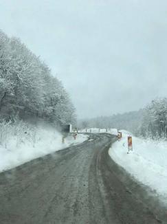 """La un an după alunecarea de teren de la Vârfuri, şeful CNAIR promite că """"la anul"""" se vor relua lucrările pe DN 76 pe cei 33,3 km până la Ştei (FOTO)"""
