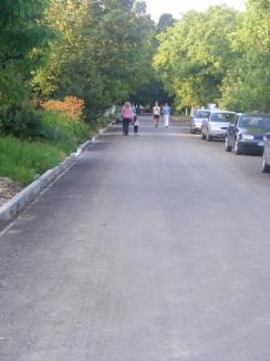 Municipalitatea vrea să construiască un pod nou peste Peţa